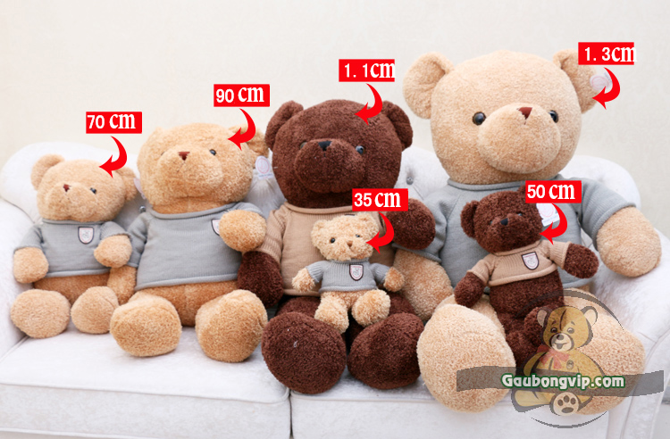Gấu Teddy Head & Tales 6